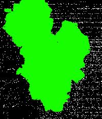 Holi Rang Green Color Splash