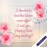Happy Rose Day Status Greeti