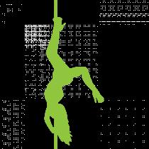 Pole Dance Lady PNG  (85)