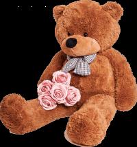 Brown Teddy Bear PNG Image -