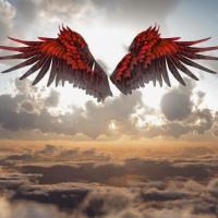 Wing CB Picsart Background -