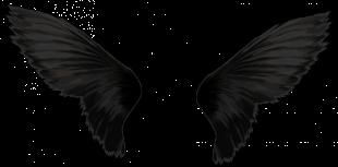Black Angels Wings PNG - Tra