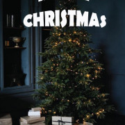 Merry Christmas Editing Background 25th December picsart Photo Download Marry