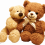 Cute Teddy Bear PNG Image - Transparent photo (3)
