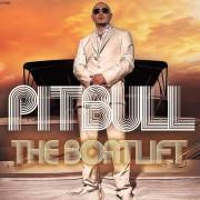 Pitbull Wallpapers Photos Pictures WhatsApp Status DP Full HD star Wallpaper