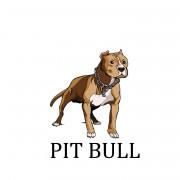 Pitbull Wallpapers Photos Pictures WhatsApp Status DP Pics