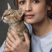 Alia Bhatt Pics | Photos HD Mobile Wallpaper Pictures WhatsApp Status DP Cute